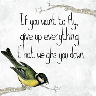 pixabay-motivational-quote-fly-bird-free-goals-dreams